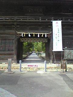 Image275.jpg