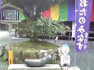 Image804.jpg