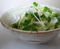 新玉サラダ.JPG