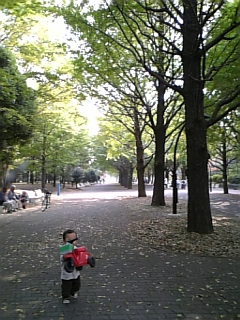 光が丘公園10月