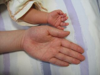 ママの手、大地の手