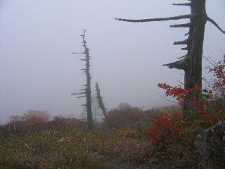 20061004那須山1