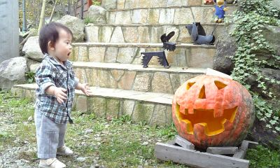 かぼちゃ!