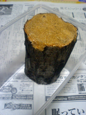 産卵木 ケース内でマイナスドライバー使って皮と渋皮?を削り、そのまま下にひきま... オオクワガ