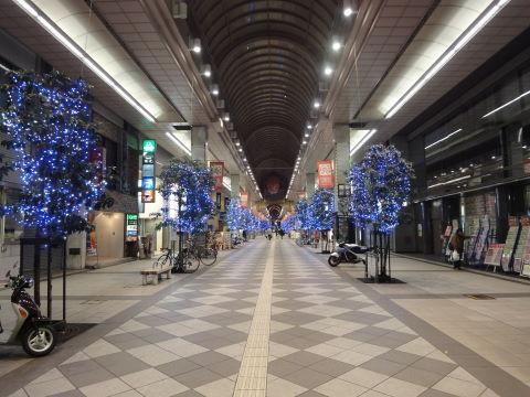 20101201_明眸0007.JPG
