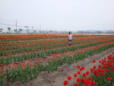 20090504_道の駅よねやま0001.JPG