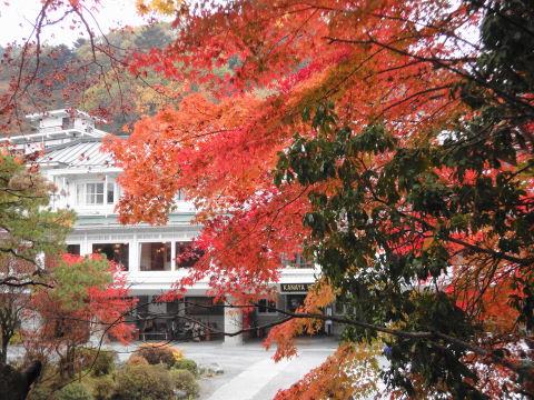 20091108_金谷ホテル0003.JPG