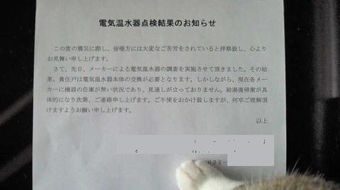 NEC_0026.JPG