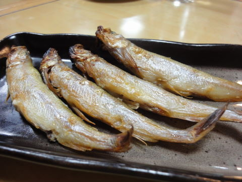 2010-12-10_牛兵衛0010.JPG