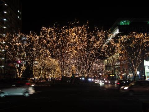 20091215_彦蔵0002.JPG