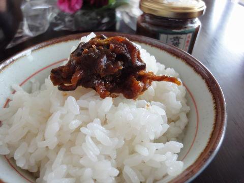 2010-10-16_青唐辛子0004.JPG