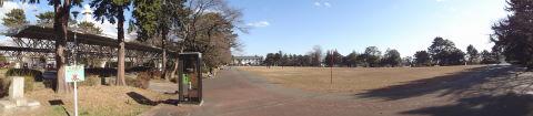20100124_榴岡公園0002.JPG