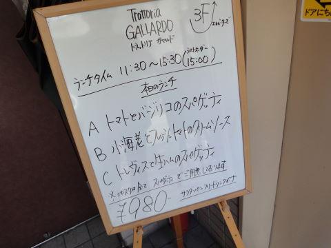 20091224_ガヤルド0001.JPG
