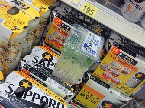 20100616_かいわれ0001.JPG