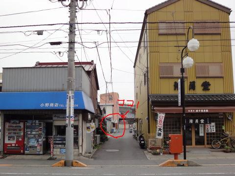 20100315_小櫻0008.JPG