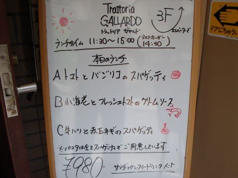 20090703_ガヤルド0001.JPG