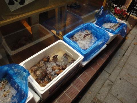 2010-11-11_魚がし0002.JPG