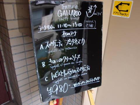 20081028_ガヤルド0001.jpg