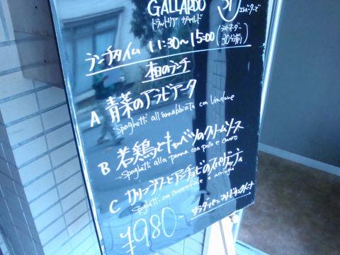 20081205_ガヤルド0002.JPG