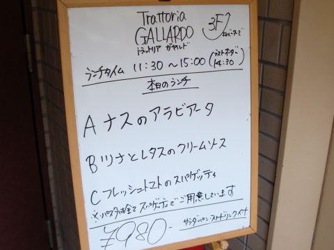 20090608_ガヤルド0001.JPG