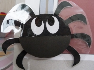 普通の顔のクモ.jpg