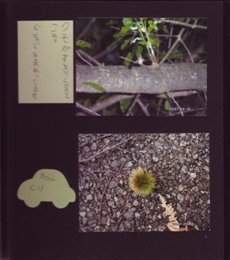 アルバム3.JPG
