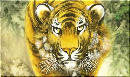 虎の画像 p1_5