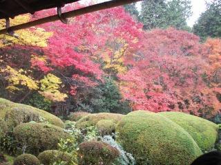 2008年11月29日京都 009.jpg
