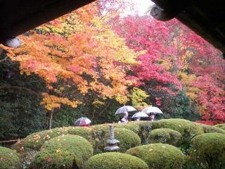 2008年11月29日京都 010.jpg