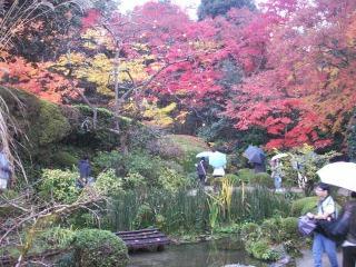 2008年11月29日京都 014.jpg
