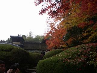 2008年11月29日京都 016.jpg