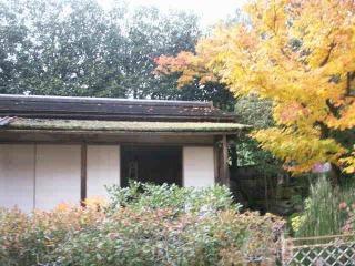 2008年11月29日京都 017.jpg