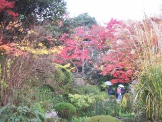 2008年11月29日京都 019.jpg