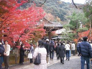 2008年11月29日京都 020.jpg