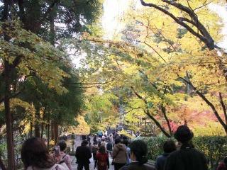 2008年11月29日京都 022.jpg