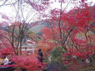 2008年11月29日京都 027.jpg