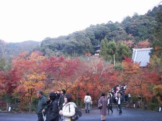 2008年11月29日京都 026.jpg