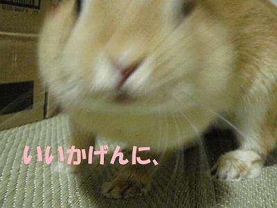 P9101364.jpg