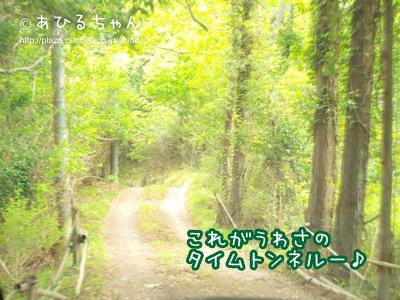 20110513_08.jpg