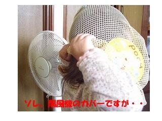 CIMG6067.jpg
