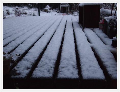 雪 3.JPG