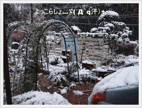 雪 6.JPG