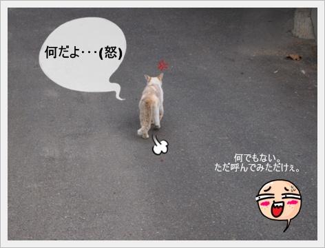2011_0827画像0046.JPG