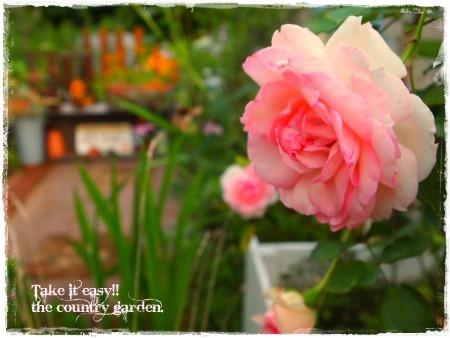 2011_0807画像0050.JPG
