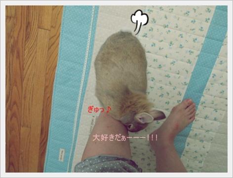 2011_0902画像0111.JPG