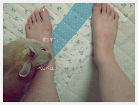 2011_0902画像0114.JPG