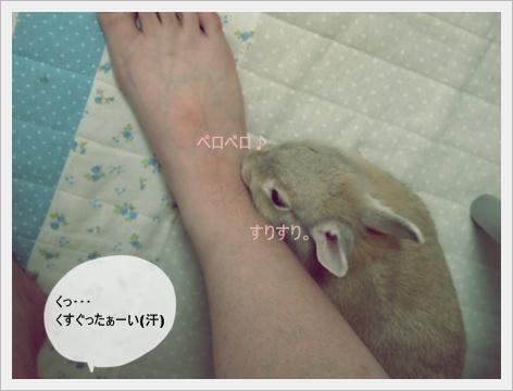 2011_0902画像0115.JPG