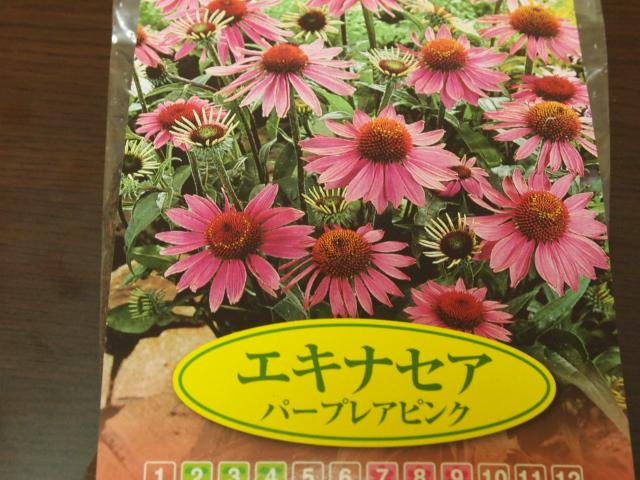 2011_0223画像0005.JPG