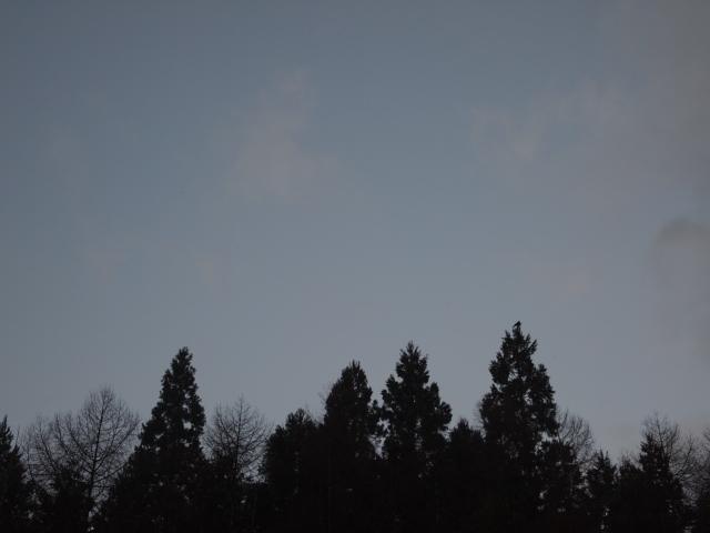 2010_1210画像0010.JPG