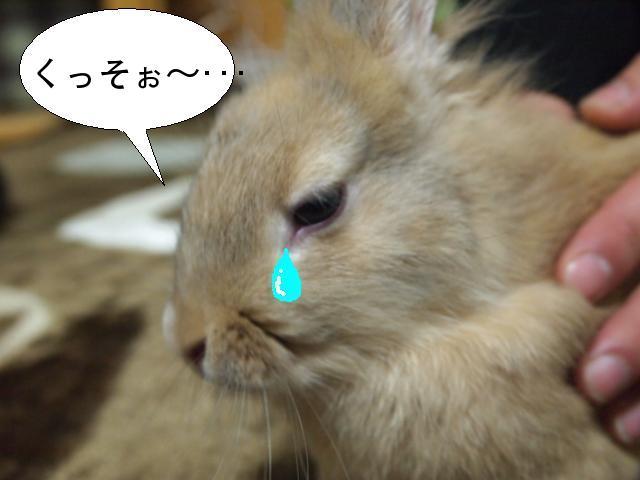 泣きツー.JPG